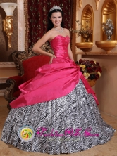 Palmas Bellas Panama Taffeta and Zebra For 2013 Quinceanera Dress With Beading and Hand Made Flowers Style QDZY367FOR