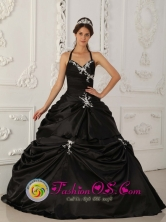 Pocri Panama With Halter Neckline Black Princess Appliques 2013 Quinceanera Dress Taffeta Style QDZY328FOR