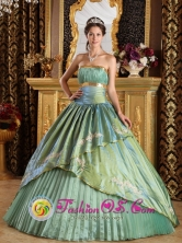 Punta Pena Panama Appliques Discount Olive Green 2013 Quinceanera Dress Strapless Taffeta and Organza Ball Gown For 2013 Quinceanera Style QDZY280FOR
