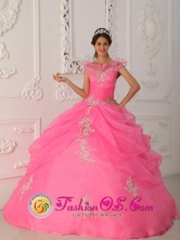 Sabanitas Panama Latest Rose Pink Quinceanera Dress Prescott Valley V-neck Taffeta and Organza Appliques With Beading Decorate Bodice Ball Gown For 2013 Spring Style QDZY267FOR
