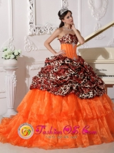 2013 Pucallpa Peru Customer Made Sweetheart Neckline With Brush Leopard and Organza Appliques Decorate Quinceanera Dress In Phoenix Style QDZY333FOR