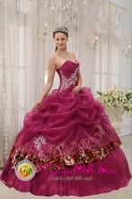 Ica Peru Popular Burgundy Quinceanera Sweetheart Organza and Leopard or zebra Appliques Ball Gown Dress Style QDZY398FOR