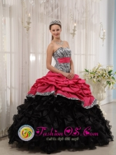 Gorgeous Zebra with Beading and Pick-ups Colorful Ball Gown For 2013 Quinceanera Dress  IN Jose Pedro Varela Uruguay Style QDZY434-2FOR