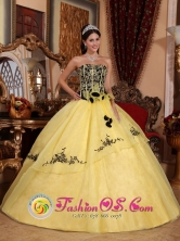 Light Yellow Strapless For Beautiful 2013 Spring Quinceanera Dress With Embroidery and Hand Made Flowers IN Tacuarembo Uruguay Style QDZY233FOR