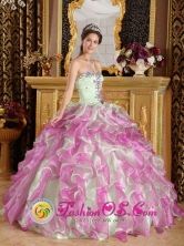 Wholesale  2013 Quinceanera Dress Latest Fuchsia and Apple Green Organza With Appliques Sweetheart Ball Gown IN Colonia Valdense Uruguay Style QDZY249FOR