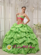 Salamanca Mexico Wholesale Party Special Spring Green Sweetheart Neckline Quinceanera Dress With Beadings and Pick-ups Decorate Style QDZY477FOR