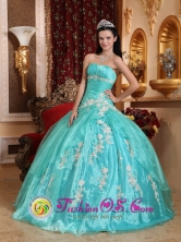 2013 Nuevo Laredo Mexico Wholesale Quinceanera Dress  Strapless Turqoise Organza  Appliques Ball Gown Style QDZY685FOR