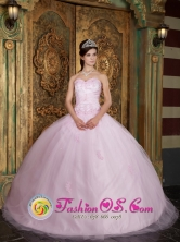 Chihuahua Mexico Wholesale Lovely Baby Pink  Quinceanera Dress With Appliques Decorate For Summer Style QDZY151FOR