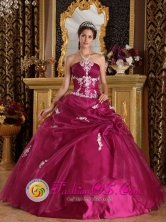 Xalapa Mexico Wholesale Appliques Brand New Fuchsia Dress Strapless Organza and Satin Ball Gown For 2013 Quinceanera Style QDZY310FOR