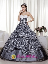 Achutupo Panama Beading and Ruch 2013 Quinceanera Dress Luxurious A-line Sweetheart Floor-length Zebra and Organza for Formal Evening Style MLXN105FOR