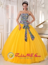 Tonosi Panama For Formal Evening Golden Yellow and Printing Quinceanera Dress Bowknot Tulle Ball Gown Style PDZY713FOR