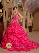 2013 Customer Made Spaghetti Straps Hot Pink Embroidery Decorate Quinceanera Dress In Vicente Noble Dominican Style QDZY343FOR