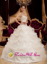 Champagne Sweetheart 2013 Quinceanera Dresses With Pick-ups Appliques Decorate Bodice In Moca Dominican Style QDZY162FOR