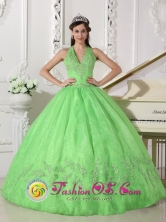 Winter Elegant A-line Spring Green Halter Top Appliques Decorate Quinceanera Dress With Taffeta and Organza 2013 Jarabacoa Dominican Style QDZY618FOR