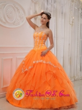 Cerro de Pasco Peru Luxurious 2013 Summer wholesale Quinceanera Dress With Sweetheart Organza Appliques Bodice Style QDZY311FOR