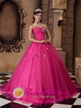 Tacna Peru Fuchsia A-line Appliques Decorate Bust Dress With Sweetheart For 2013 wholesale Quinceanera Style QDZY318FOR