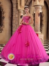 Tingo Maria Peru Luxurious Hot Pink wholesale Quinceanera Dress For Summer Strapless With Flowers And Appliques Decorate Style QDZY181FOR