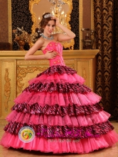 Tuman Peru Hot Pink Quinceanera Dress With Sweetheart and Beading Decorate Organza and Zebra Layers wholesale Style QDZY013FOR