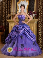 Viru Peru Princess Purple 2013 Winter Strapless wholesale Quinceanera Dress With Appliques and Pick ups Style QDZY201FOR