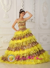 2013 Aasco Puerto Rico fall Leopard and Organza Ruffles Yellow Quinceanera Dress With Sweetheart Neckline Wholesale  Style QDZY007FOR