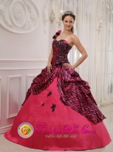 2013 Camuy Puerto Rico One Shoulder Hand Zebra Made Flowers Sweet 16 Dress Coral Red For Quinceanera Wholesale  Style QDZY384FOR