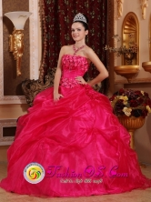 2013 Carolina Puerto Rico Organza Hot Pink Beaded Quinceanea Dresses for Sweet 16 Dresses Wear Wholesale Style QDZY659FOR