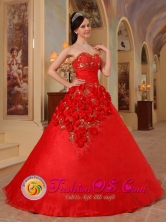 A-line Hand Made Flowers Beaded Exclusive Red Quinceanera Dress For 2013 Arroyo  Puerto Rico Wholesale Style QDZY203FOR