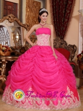 Beaded Decorate Bodice Lovely Hot Pink Sweet Quinceanera Ball Gown Dress Strapless Organza Ball Gown In Caguas Puerto Rico Wholesale Style QDZY501FOR