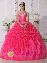 Beaded Embroidery Hot Pink  Modest Quinceanera Dress For 2013 Loiza Puerto Rico Ruffles Decorate Wholesale Style QDZY703FOR
