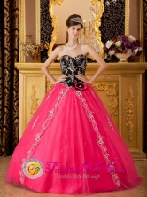 Brand New Hot Pink and Black Quinceanera Dress With Sweetheart Neckline and Hand Made Flower Decorate Tulle Skirt in Spring  In Aibonito Puerto Rico Wholesale Style QDZY130FOR