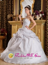 Customize Beading Inexpensive Style Quinceanera Dress For 2013 Quebradillas Puerto Rico Grey  Organza  Sweetheart Ball Gown Wholesale Style QDZY221FOR