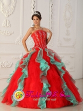 Customize Multi-color Appliques Quinceanera Dress With Organza For Sweet 16 For 2013 Arecibo Puerto Rico Summer Wholesale Style QDZY299FOR