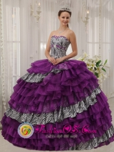 Customize Zebra and Purple Organza With shiny Beading Affordable Quinceanera Dress Sweetheart Ball Gown In Cayey Puerto Rico Wholesale  Style QDZY436FOR