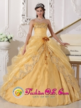 Hand Made Flower Embroidery Beading Decorate Organza Gold Sweetheart Quinceanera Dress In Catao Puerto Rico Wholesale Style QDZY688FOR