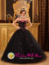 Popular Black Quinceanera Dress For 2013 Fajardo Puerto Rico Tiny Flowers Decorate Strapless Tulle Ball Gown Wholesale Style QDZY165FOR