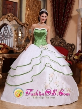 Spring Green and White For Stylish Quinceanera Dress Strapless Organza Embroidery for Sweet 16 In Las Marias Puerto Rico Wholesale Style QDZY536FOR