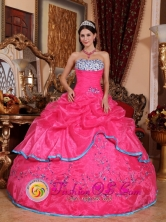 Strapless Custom Made Beading With Hot Pink Quinceanera Dress For Fall In Toa Baja Puerto Rico Wholesale Style QDZY430FOR
