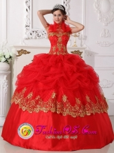 Sweet 16 Hot Pink Halter Embroidery 2013  Special Quinceanera Gowns With Pick-ups Wholesale Style QDZY694FOR