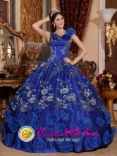 V-neck Satin Refined Appliques Decorate Exquisite Blue Quinceanera Dresses For Spring In Coamo Puerto Rico Wholesale Style QDZY746FOR