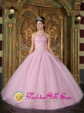 Custom Made  Wholesale Strapless Pink Ball Gown With Appliques for 2013 Quinceanera In Carupano Venezuela Style QDZY096FOR