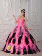 Customer Made Wholesale Beautiful Pink and Black Princess Quinceanera Dress For 2013 Spring In Arismendi Venezuela Style QDZY262FOR