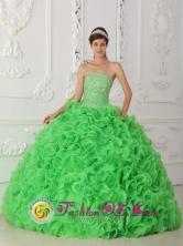For 2013 Beautiful Wholesale Green Quinceanera Dress Strapless Organza With Beading Ball Gown In San Sebastian Venezuela Style QDZY257FOR