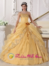 Hand Made Wholesale Flower Embroidery Beading Decorate Organza Gold Sweetheart Quinceanera Dress In San Carlos Venezuela Style QDZY688FOR