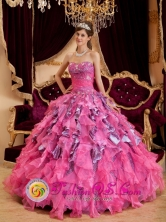 Hot Pink Wholesale Sweetheart Neckline 2013 Quinceanera Dress With Leopard and Organza Ruffled Skirt In Achaguas Venezuela Style QDZY128FOR