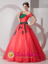 Pretty One Shoulder Wholesale Ruching Quinceanera Dress With Hand Made Flowers In Achaguas Venezuela Style MLXNHY01FOR