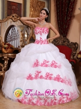 Strapless Appliques Wholesale Organza Wholesale Quinceanera Dress for 2013 Ball In Guasipati Venezuela Style QDZY684FOR