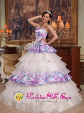 Customize Exquisite Hand Made Flowers Elegant Organza and Printing Quinceanera Dress For 2013  Puerto Concordia Colombia Wholesale Quinceanera  Style QDZY426FOR