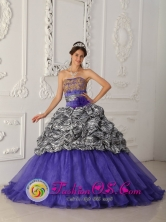 Pupiales Colombia Wholesale Customer Made Brand New Zebra and Organza Purple Quinceanera Dress For Custom Made Strapless Chapel Train Ball Gown  Style QDZY322FOR