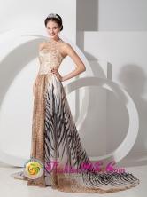 2013 Moquegua Peru Unique Empire Multi-color Strapless Court Train Special leopard and zebra print Fabric wholesale Prom Dress Style AFE080801FOR