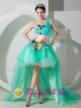 Unique Apple Green Princess One Shoulder High-low Organza Beading and Appliques Prom Dress for Celebrity in Viacha Bolivia Style MLXN080802FOR